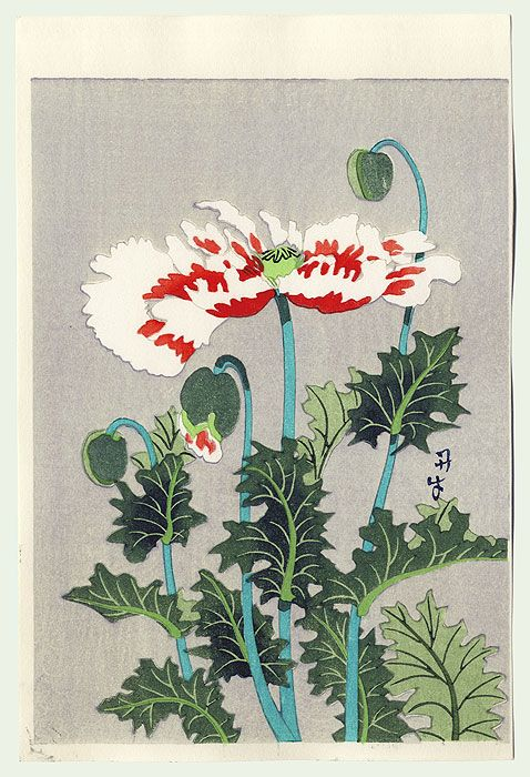 periwinkleliving:   (via Fuji Arts Japanese Prints - Poppies by 20th century artist (not read))