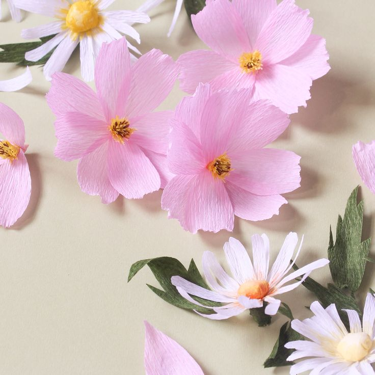 Paper Flowers- Cosmos & Daisies by A Petal Unfolds