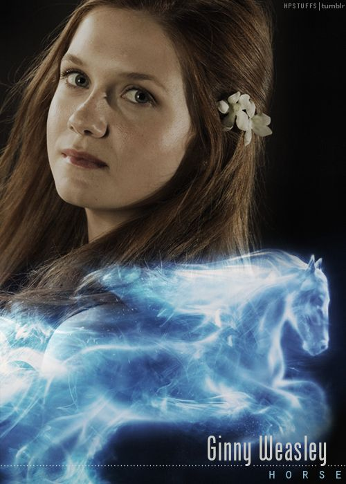 I love that Ginny's patronus is a horse. What little girl doesn't want a horse, and yet it is a powerful animal. It speaks to both her strength and feminity.
