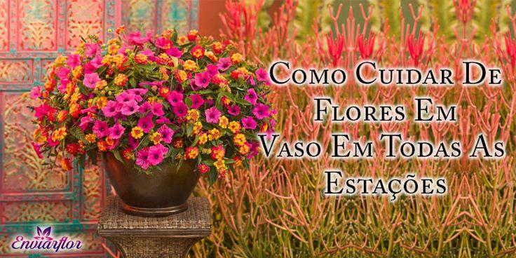 Faça deste Inverno Memorável de seu amado, #enviando #flores perfeitas à sua porta..!