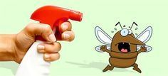 Εξαφανίστε άμεσα Κουνούπια, Μύγες και Κατσαρίδες από το Σπίτι σας με ΑΥΤΟ το Φυσικό Εντομοαπωθητικό! #χρήσιμα