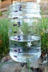 Third Grade Life Science Activities: Make a Rain Gauge ...