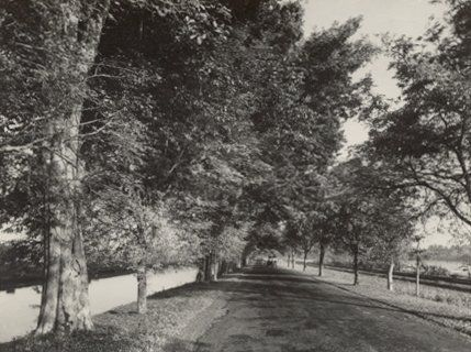 Straatbeeld, omgeving Surabaya, Indonesië (ca. 1950)