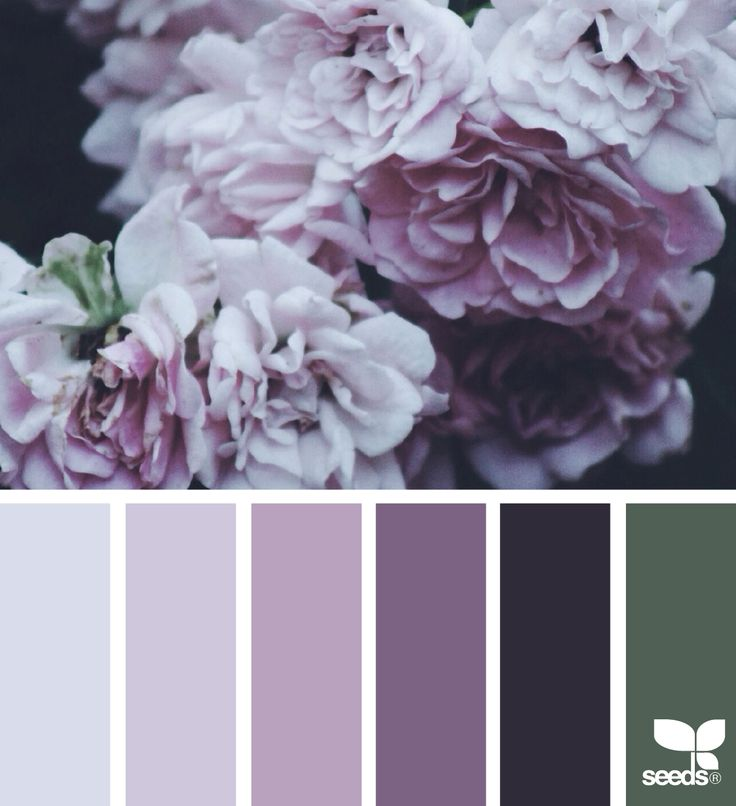 { flora hues } image via: @beautelicieuse