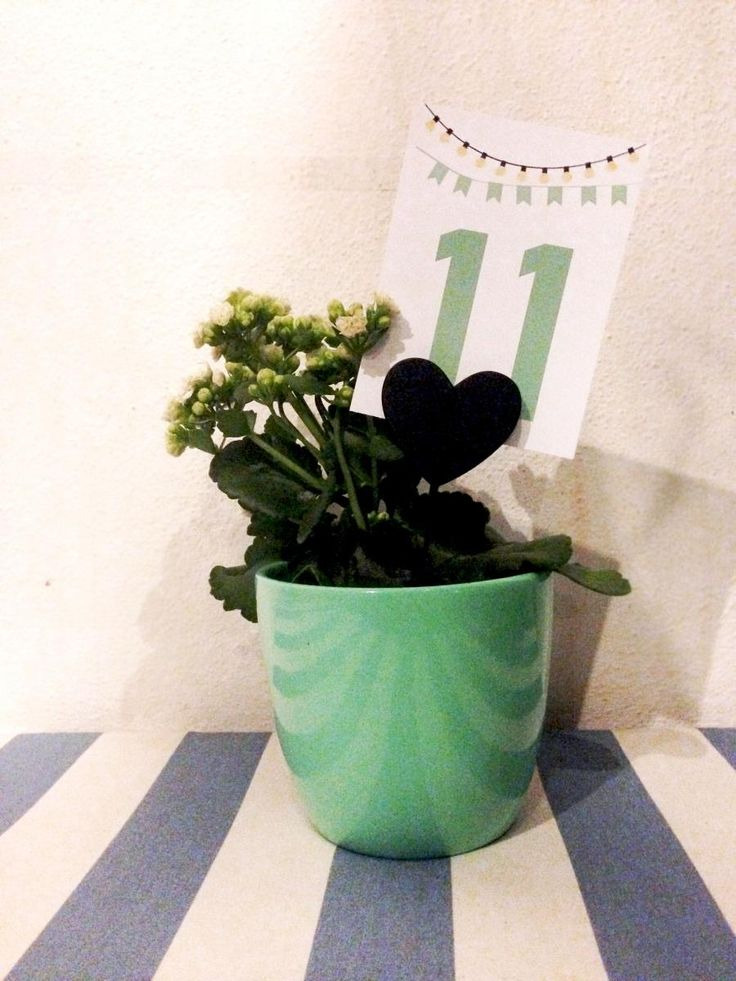 'Folegandros Wedding Panigiri' Pistachio pots plants table numbers | lafete
