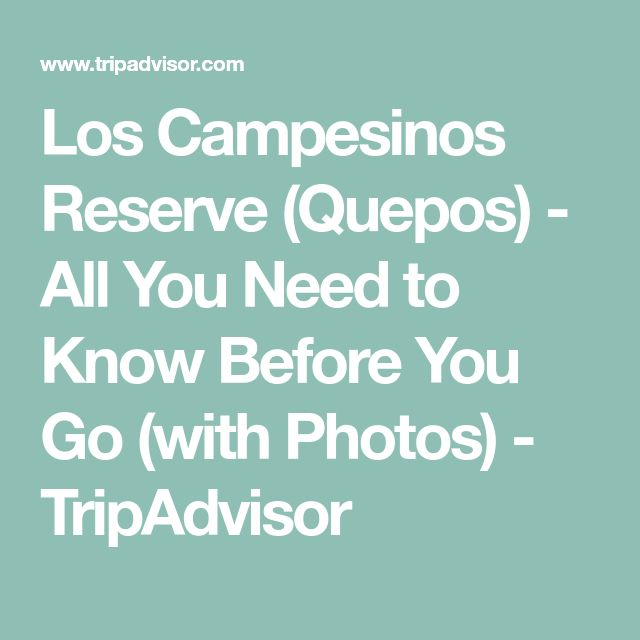Los Campesinos Reserve (Quepos) - All You Need to Know Before You Go (with Photos) - TripAdvisor