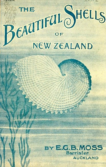 : Covers Collection, Zealand Book, Blue Shells, 1 Sea, Zealand 1908, Beautiful Shells, Book Covers, Blue Beautiful, New Zealand