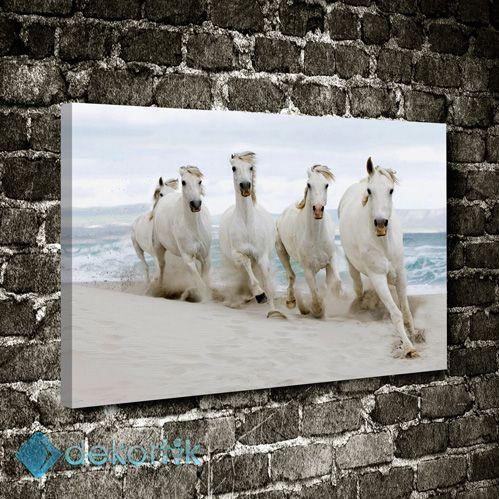 Sahilde Beyaz Atlar Tablo #hayvan_tabloları