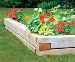 This natural raised garden is a beautiful addition to your garden! Your flowers will come to life next to the natural wood.
