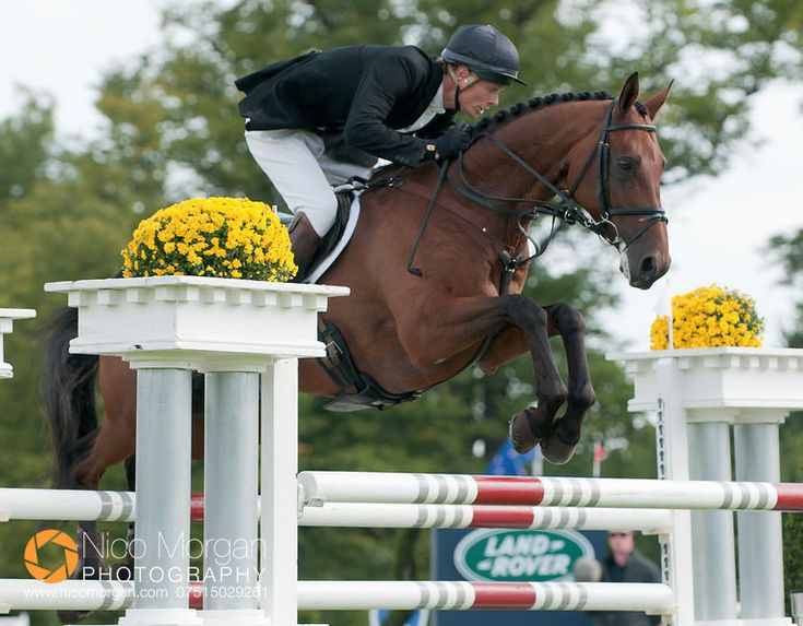 William Fox Pitt - Burghley-2010-Show-Jumping #eventing #topriders