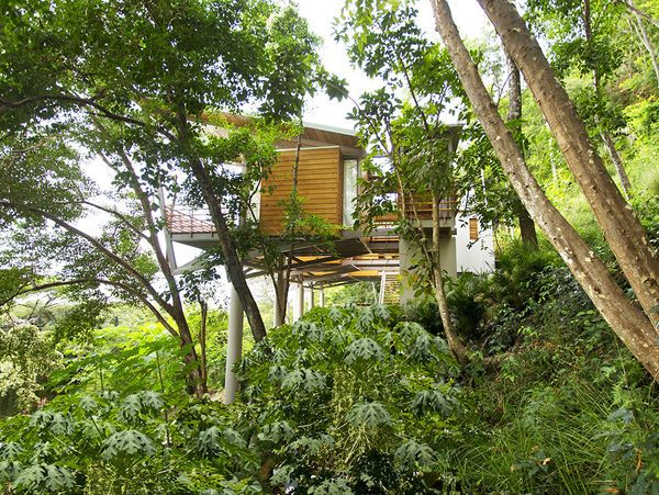 Lush Organic Floating Houses