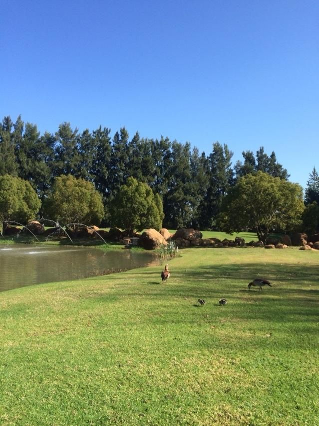 Is sure does feel like Spring today! Waterford Wine Estate, Cape Winelands, South Africa. pic.twitter.com/g6SLKIaEKN