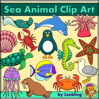 This big sea life clip art pack contains 29 cute and colorful images of sea animals. The images are available both in color, and in black and white outline, in png format at 300 dpi for transparent backgrounds and good resolution. This pack includes the following animals: dolphin, whale, shark, fish, tropical fish, eel, seahorse, starfish, lobster, crab, coral, seal, walrus, penguin, seagull, pelican, turtle, sea anemone, sea urchin, clam, scallop, shrimp (prawn), sea otter, orca, stingray…