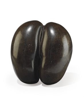A polished ´coco de mer´ shell from the Seychelles Islands