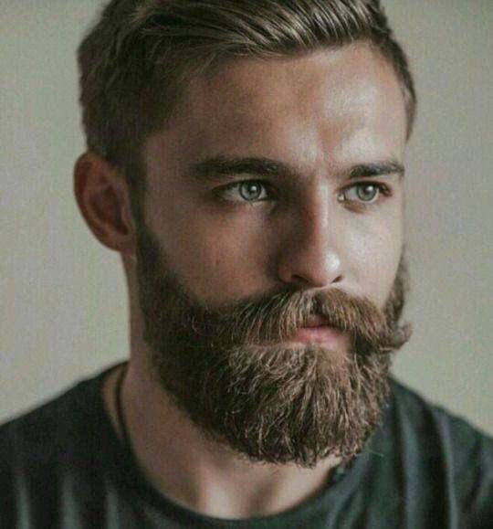 Beard Products as seen in GQ Magazine