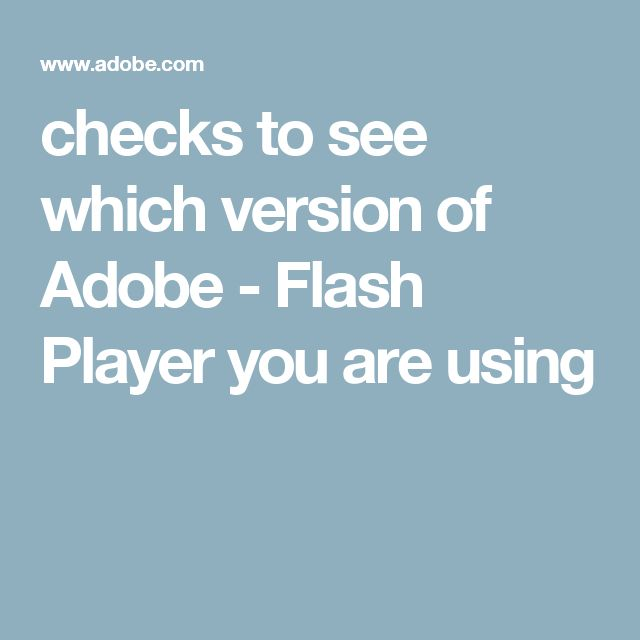 checks to see which version of Adobe - Flash Player you are using