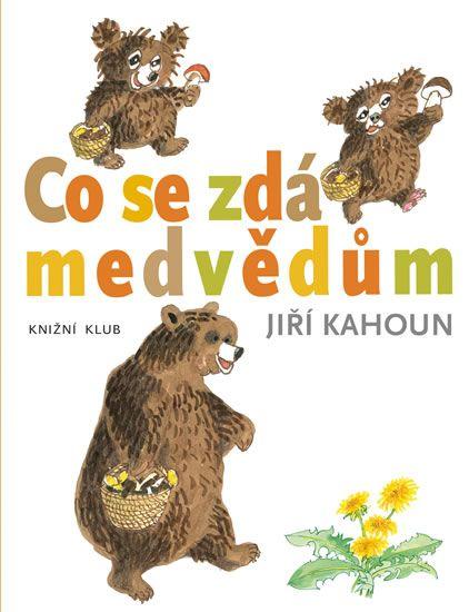 Kniha Co se zdá medvědům   bux.cz