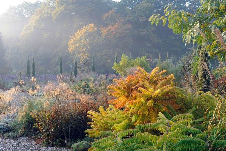 Die besten 25 essigbaum ideen auf pinterest obstfliegen for Obstfliegen in pflanzen