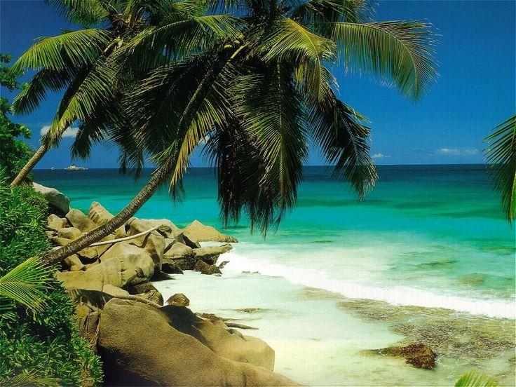 Best 25 fond d 39 ecran paysage ideas on pinterest fond d for Fond ecran plage gratuit
