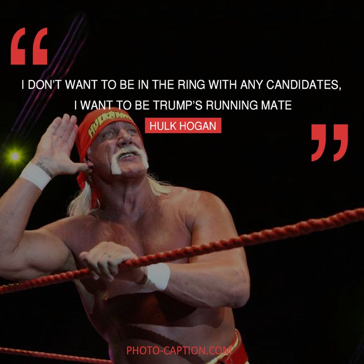 ''I don't want to be in the ring with any candidates, I want to be Trump's running mate.'' Hulk Hogan #Hulkhogan #celebrities #celebrity #Hollywoodstars #Hollywood #presidents #election2016 #ElectionDay #MyVote2016 #DonaldTrump #Donald_Trump #voted #postvotingstressrelief #quote #quotes #quotegram #quoteoftheday #caption #captions #photocaption #FF #instafollow #l4l #tagforlikes #followback