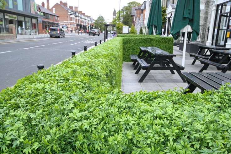 Artificial Topiary Boxwood Hedges created for a Patio Cafe & Bar area