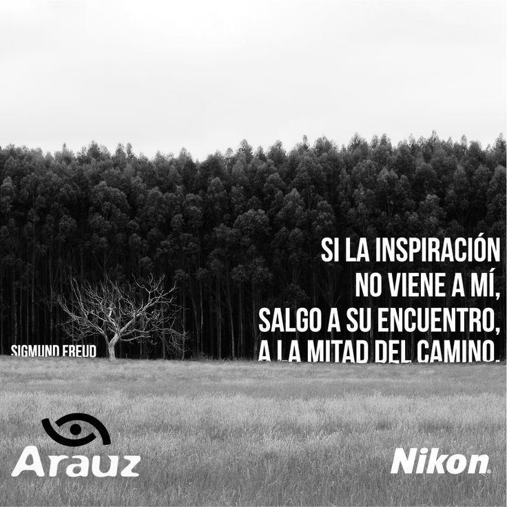 Según Freud, siempre ando inspirado con #ArauzDigital #Nikon