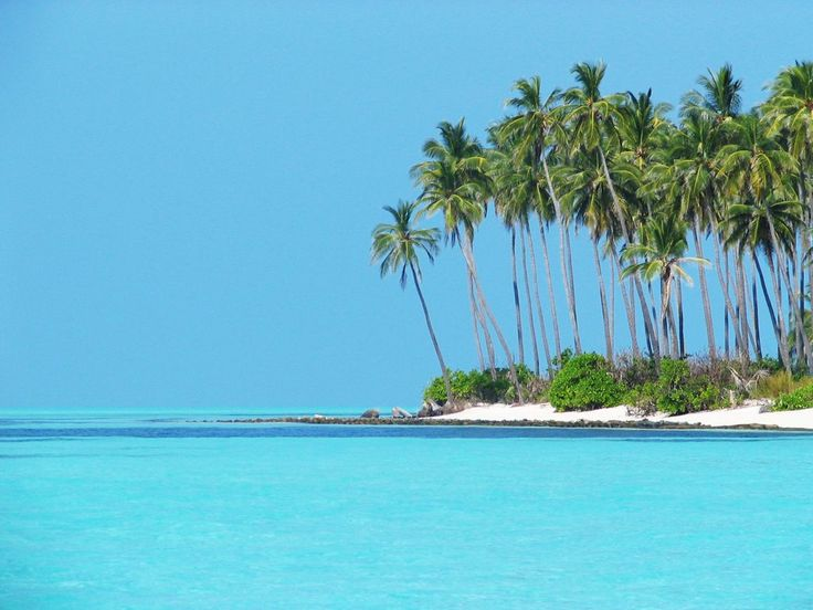 Thinakkara Islands, Lakswadeep, India Photo: Saurav De via panoramio.com: