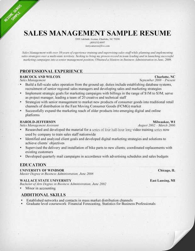 Resume Examples Sales Manager