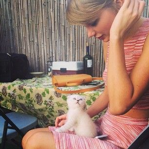 In case you don't know, Taylor Swift is all about the cats. | Taylor Swift's Cat Olivia Benson Finally Got To Meet The Real Olivia Benson