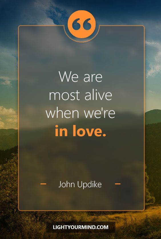 We are most alive when we're in love. - John Updike | Love Quotes | Inspirational Quotes