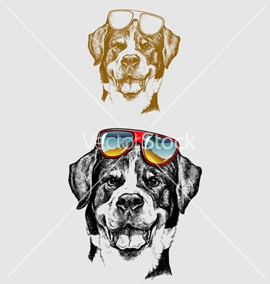 Cool dog hand drawing vector