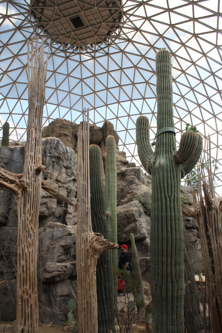 25 best omaha zoo images on pinterest omaha zoo the zoo and zoos henry doorly zoo and aquarium in omaha ne inside the desert dome love this zoo publicscrutiny Image collections