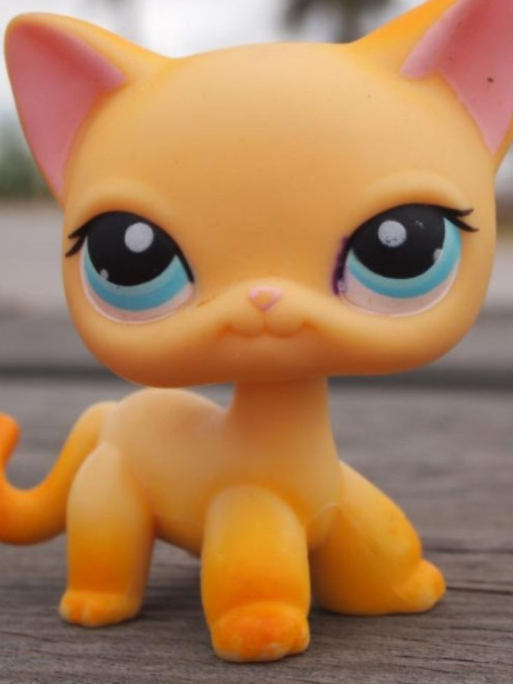 9 Best Images About Lps Drawings On Pinterest Short