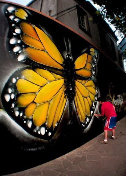 Butterfly by Fabio Lopes in Brazil