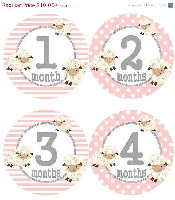 ON SALE Baby Monthly Milestone Growth Stickers Pink Grey Lamb Nursery Theme MS530 Baby Boy Girl Shower Gift Baby Photo Prop