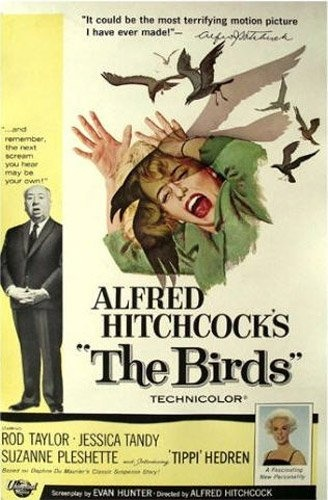 The Birds. My grandmother's favorite movie, my mom's favorite movie and also mine!Film, Movie Posters, Classic Movie, Alfredhitchcock, Alfred Hitchcock, Scary Movie, Favorite Movie, Horror Movie, Birds 1963