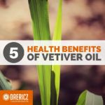 5 Proven Health Benefits of Vetiver Oil (ADHD Included!)