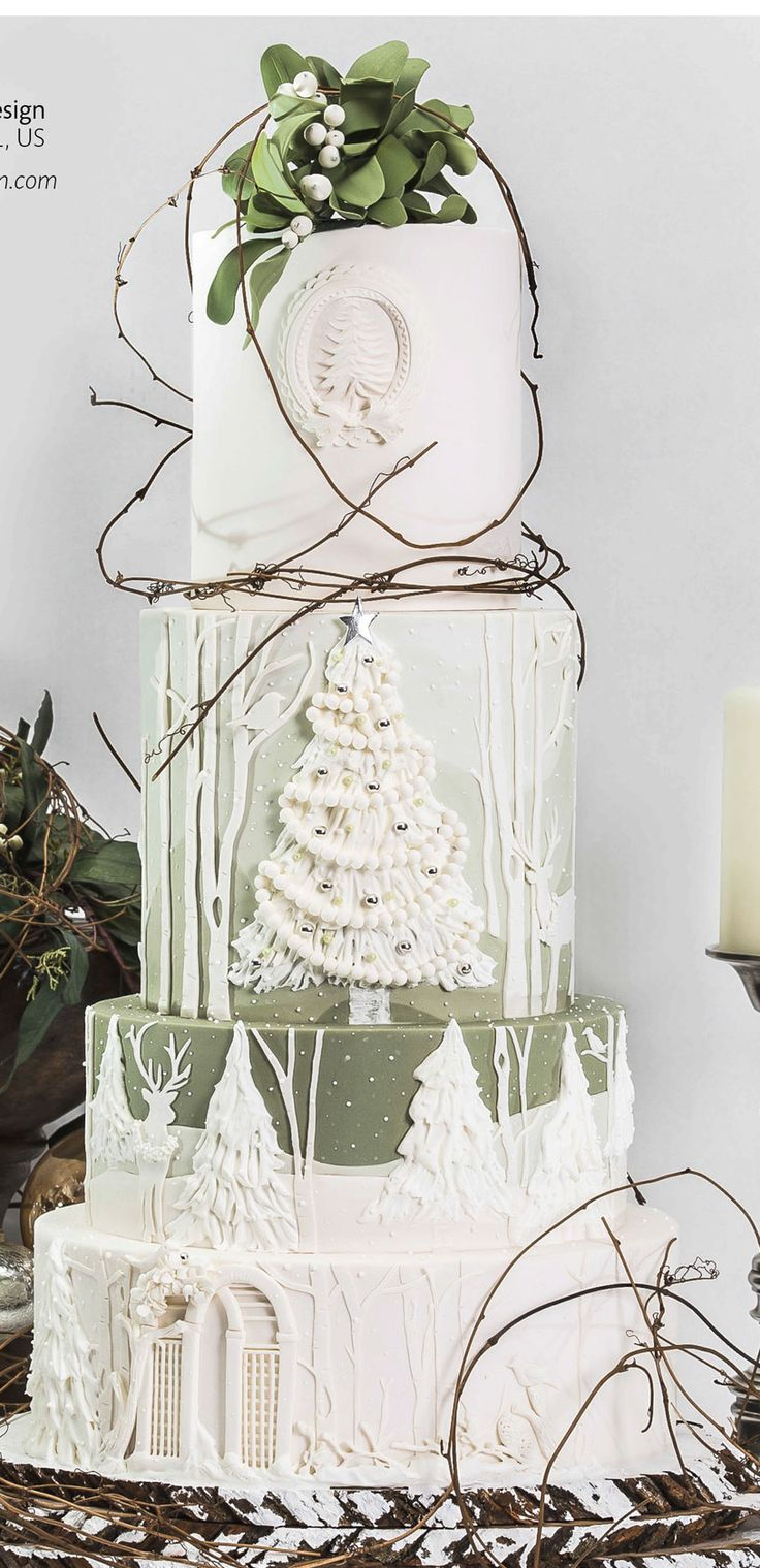 www.cakecoachonline.com - sharing....Christmas Cake Art - For all your cake decorating supplies, please visit craftcompany.co.uk