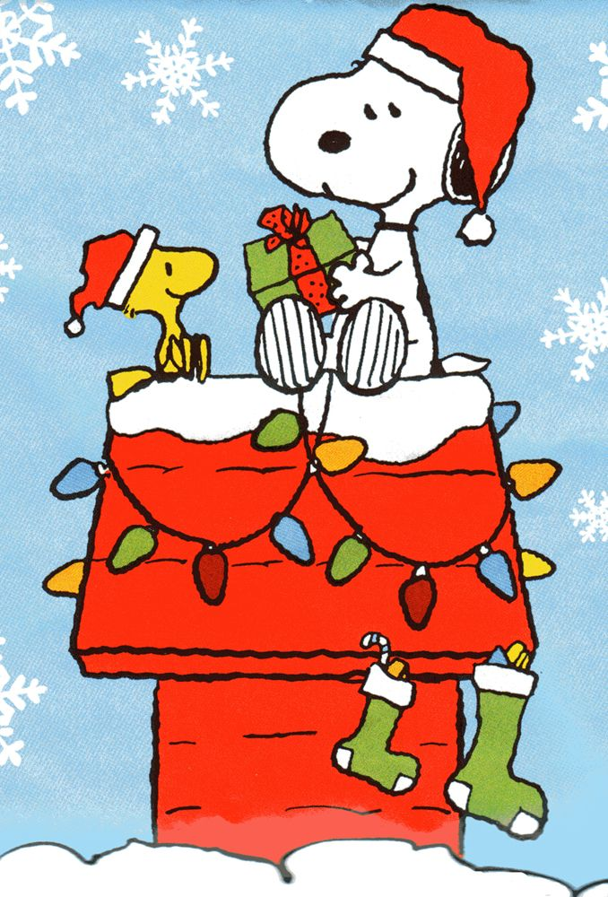 Snoopy and Woodstock sharing gifts at Christmas.❤️❤️
