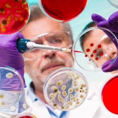 Vizsgáltasd ki magad időben a leggyakoribb ráktípusokra! 5 féle laboratóriumi tumor marker vizsgálat Nőknek, Férfiaknak: FŐORVOSI kiértékeléssel + Validált lelettel, 51% kedvezménnyel
