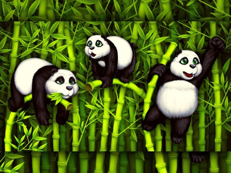 Everybody loves pandas and how can you not love them when they are so cute and gentle. These panda #illustrations capture the sweetness and lovely nature of the #panda bears. A cute, expressive character that you can use to create awesome stories.