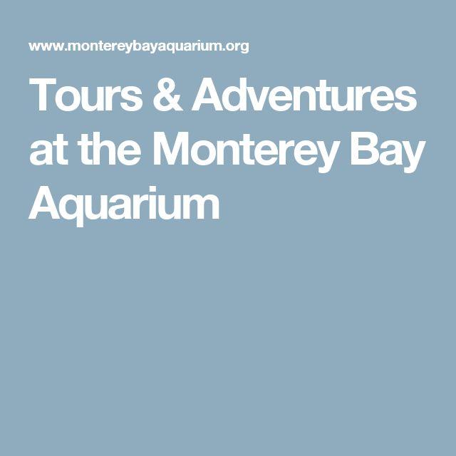 Tours & Adventures at the Monterey Bay Aquarium