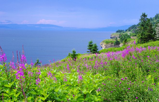 Forillon Gaspe - A Coastal Hike in Forillon National Park, Quebec