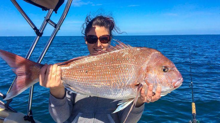 South Australian Snapper
