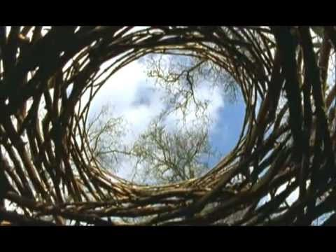 """Andy Goldsworthy documentary  """"Portrait of Andy Goldsworthy, an artist whose specialty is ephemeral sculptures made from elements of nature."""""""
