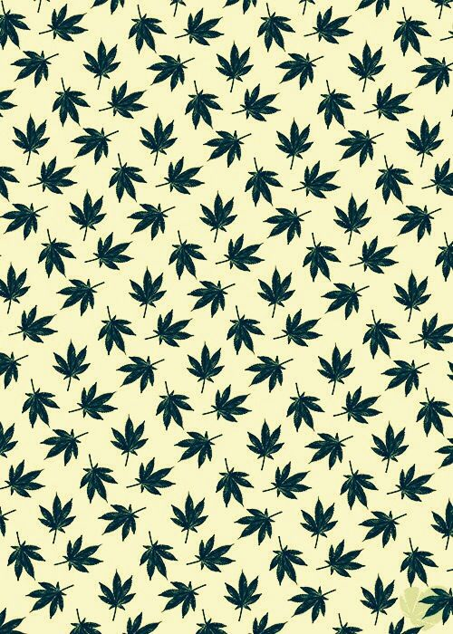 wasap weed pc