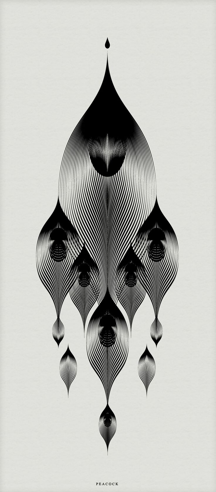 best 25 peacock pattern ideas on pinterest peacock drawing with colour feather pattern and. Black Bedroom Furniture Sets. Home Design Ideas