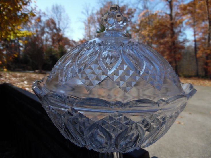 """EAPG Large Lidded Compote with  Beaded Oval Windows, pattern & Maker Unknown, 11""""H x 7.5""""D. 12/23/17"""