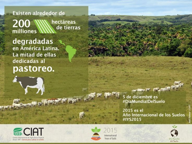 #WorldSoilDay / 200 millones de hectáreas son degradados en América Latina