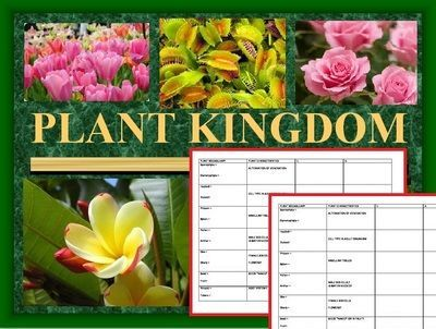 The plant kingdom power point covers plant characteristics such as cell type in adults, alternation of generation, vascular tissues, male and female gametes, flowers, root systems and geographic locations